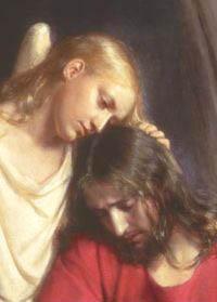 jesus comforted